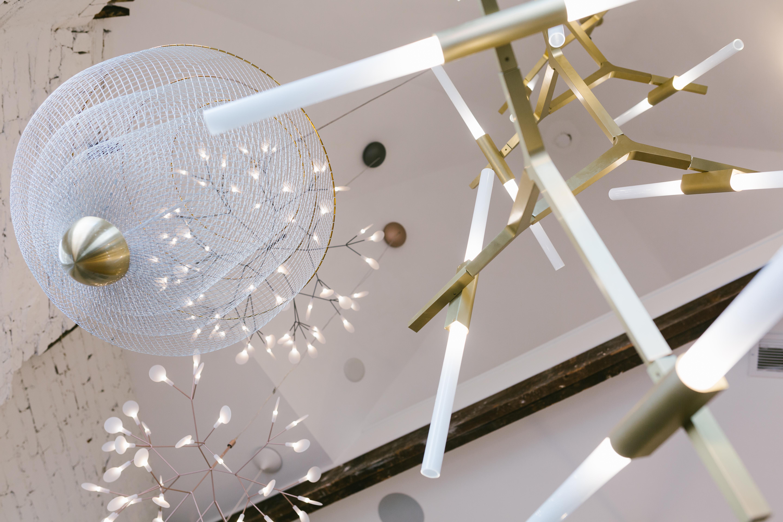 Illuminations slideshow image 5